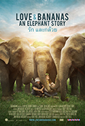 Love and Bananas: An Elephant Story