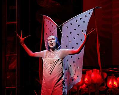 The Met Opera Live in HD Holiday Encore: The Magic Flute